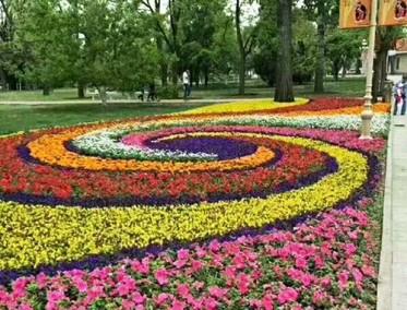 花卉租摆造型